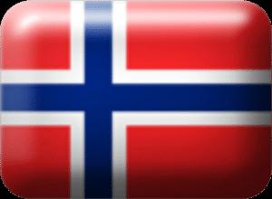 Flag, norsk - webshop